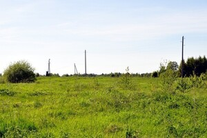 Продаж землі сільськогосподарського призначення, Черкаська, Золотоноша, c.Дмитрівка
