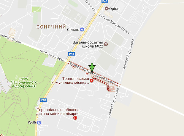 Купчинського Романа улица