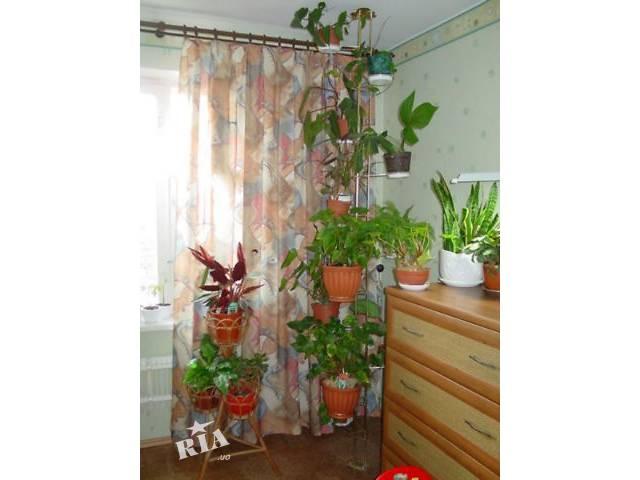 Полки и подставки для комнатных цветов.