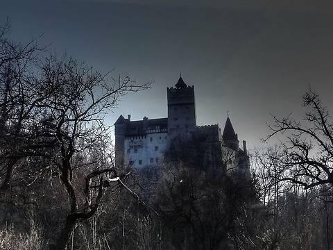 Замок Дракулы ежегодно приносит владельцам €1,2 млн.