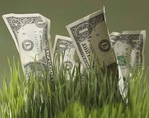 Минагрополитики выступает против снятия моратория на продажу сельхозземель
