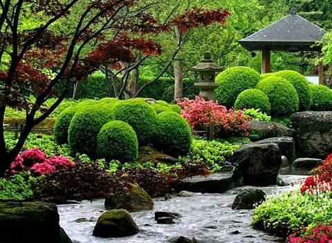 6 садовых идей:вдохните новую жизнь в ваш сад