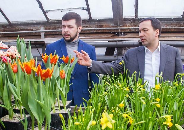Весной в Киеве высадят 13 млн. цветов