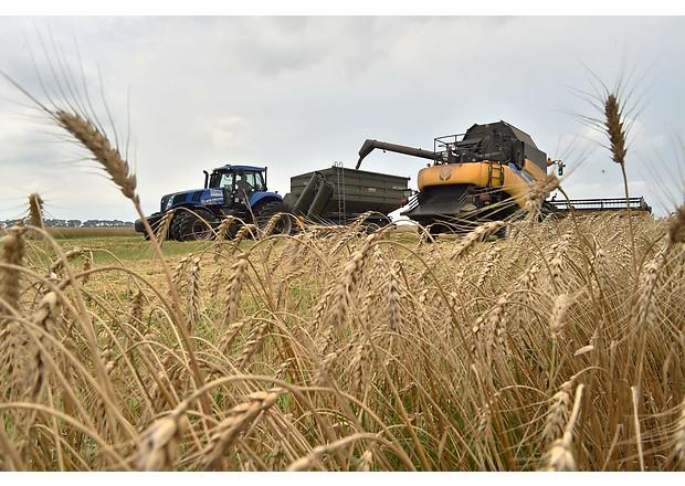 Змінилися правила успадкування земельних ділянок для фермерів