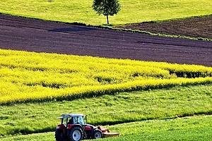ЕСПЧ призвал отменить мораторий на продажу земель