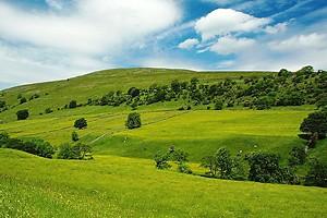 Минюст рассказал о возмещении убытков от засорения земли – ВИДЕО