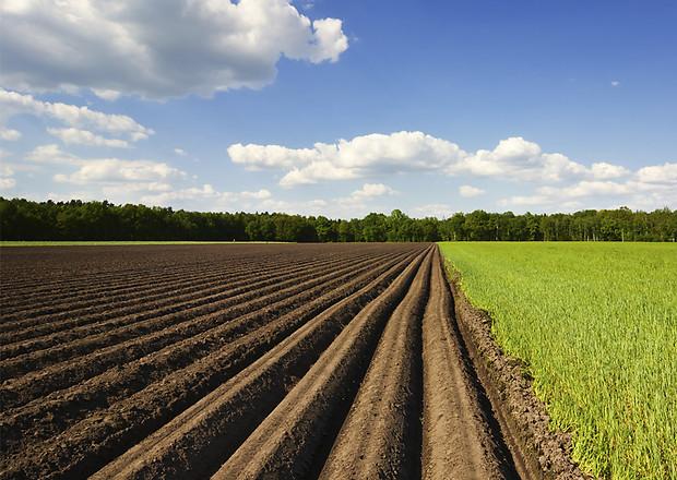 Минюст рассказал о правах владельцев земельных участков (видео)