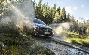 В Карпаты на автомобиле: незабываемый уикенд с Nokian Tyres