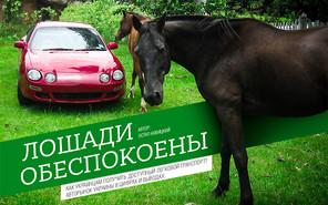 Продажи автомобилей в Украине: Лошади обеспокоены