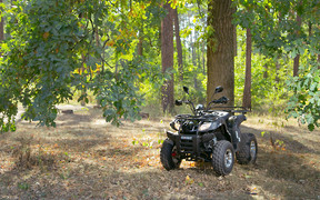 Тест-драйв квадроцикла Shineray ATV 200cc Viktory