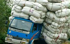 Перевозчикам: депутаты предлагают существенно повысить штрафы за перевес