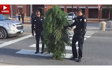 Видео: «Человек-дерево» терроризирует улицы США