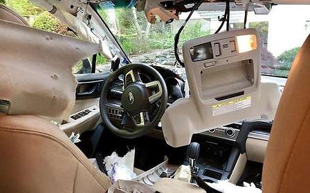 Кто сидел в моем Subaru? Медведь самостоятельно закрылся в автомобиле