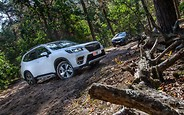 Тест-драйв Subaru Forester: В лес — ходить!