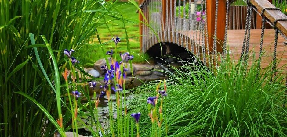 природный декоративный бассейн для дачи