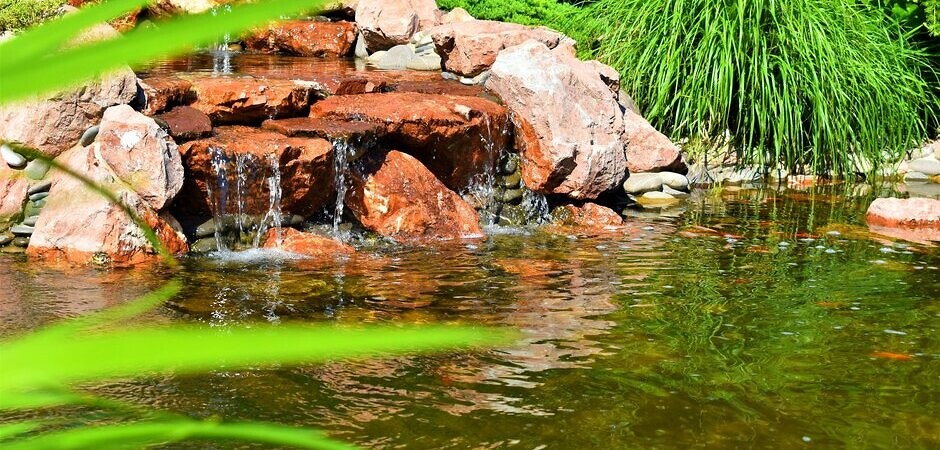 устройство природного и декоративного бассейна
