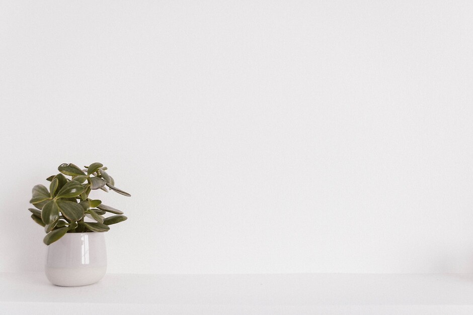 Белый цвет в интерьере фото