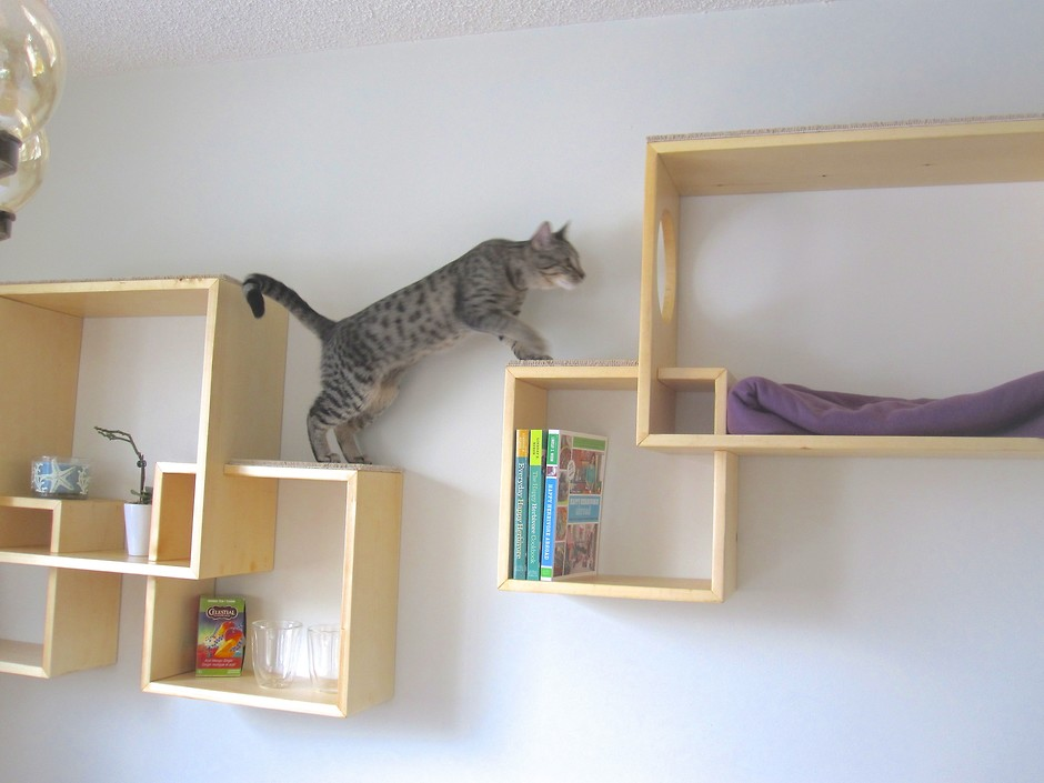 Настенные полки для котов