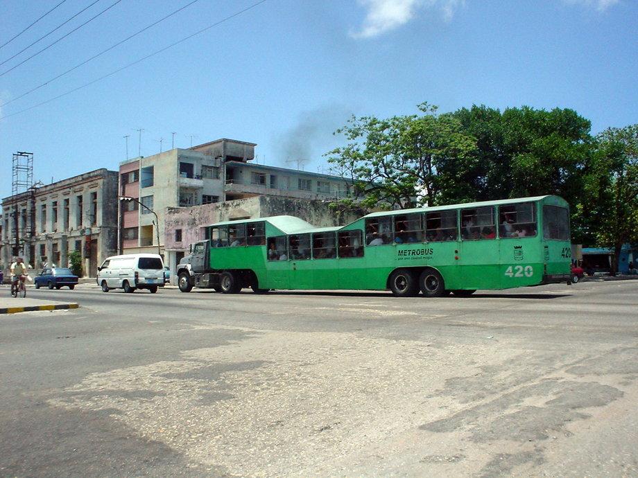 Camel Bus