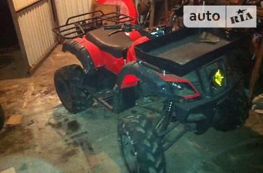 ATV 250  2013