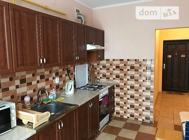 однокомнатная квартира в Ужгороде, район Новый, на ул. Капушанская в аренду на короткий срок посуточно фото 1
