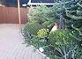 однопроверховий будинок, 150 кв. м, цегла. Здається помісячно в Запоріжжі, в районі 1-й Шевченківський фото 8