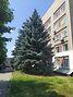 Оренда офісного приміщення в Харкові, Новгородська вулиця 3, приміщень - 5, поверх - 4 фото 4