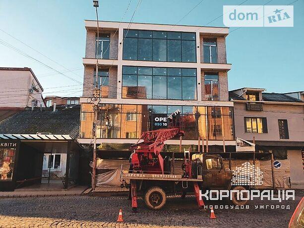 Аренда офисного помещения в Ужгороде, Фединця вулиця 43, помещений - 1, этаж - 2 фото 1
