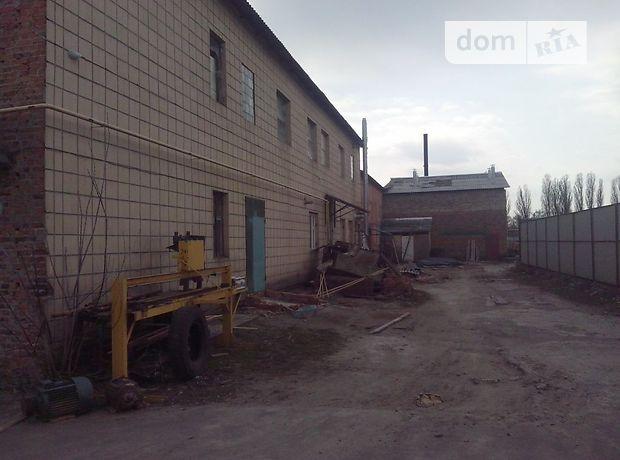 Производственное помещение в Чернигове, сдам в аренду по Франко улица 1а, район Градецкий, цена: договорная за объект фото 1