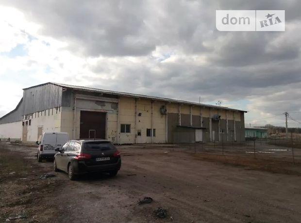 Производственное помещение в Василькове, сдам в аренду по, в селе Диброва, цена: 23 561 грн за объект фото 1