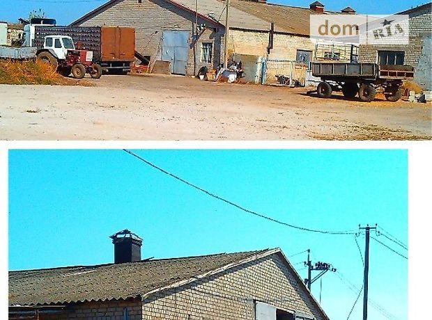 Производственное помещение в Запорожье, сдам в аренду по, в селе Разумовка, цена: 1 000 грн за объект фото 1