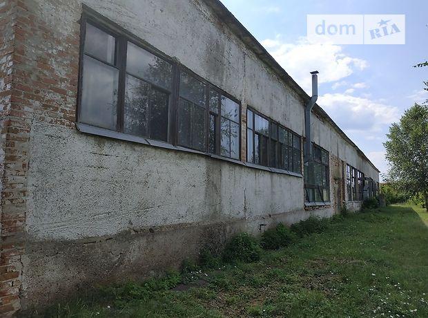 Торговая площадь в Бобровице, сдам в аренду по, район Бобровица, цена: договорная за объект фото 1
