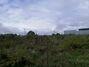 Аренда земли коммерческого назначения в селе Мишковичи, цена: договорная за объект фото 4