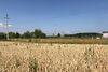 Аренда земли коммерческого назначения в Виннице, цена: договорная за объект фото 3