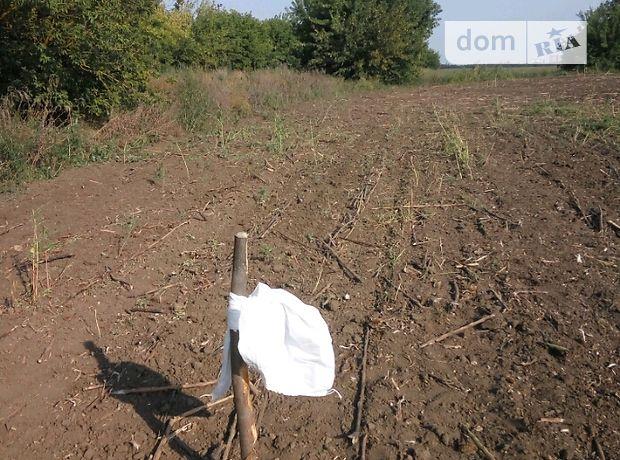 Аренда земли сельскохозяйственного назначения в Березнеговатом, цена: договорная за объект фото 1