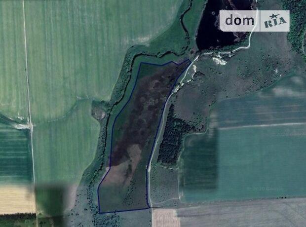 Аренда земли сельскохозяйственного назначения в селе Купин, цена: договорная за объект фото 2