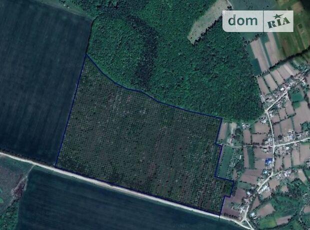 Аренда земли сельскохозяйственного назначения в селе Скипчье, цена: договорная за объект фото 2