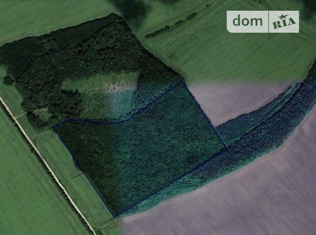 Аренда земли сельскохозяйственного назначения в Городке, цена: договорная за объект фото 2