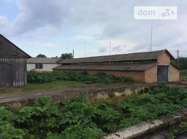 Оренда землі сільськогосподарського призначення в селі Деражне, ціна: 126 582 грн за об'єкт фото 1