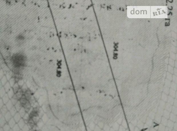 Аренда земли сельскохозяйственного назначения в селе Поддубцы, цена: 6 500 грн за объект фото 1