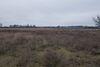 Оренда землі сільськогосподарського призначення в селі Новоселиця, ціна: договірна за об'єкт фото 4