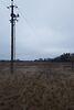 Оренда землі сільськогосподарського призначення в селі Новоселиця, ціна: договірна за об'єкт фото 6