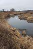 Оренда землі сільськогосподарського призначення в селі Новоселиця, ціна: договірна за об'єкт фото 7