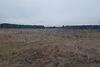 Оренда землі сільськогосподарського призначення в селі Новоселиця, ціна: договірна за об'єкт фото 3