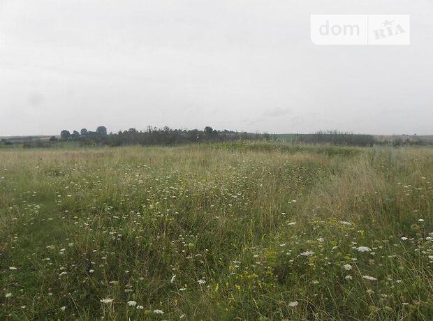 Аренда земли сельскохозяйственного назначения в селе Ольшана, цена: договорная за объект фото 1
