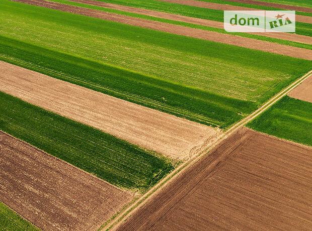 Аренда земли сельскохозяйственного назначения в Ровно, цена: договорная за объект фото 2