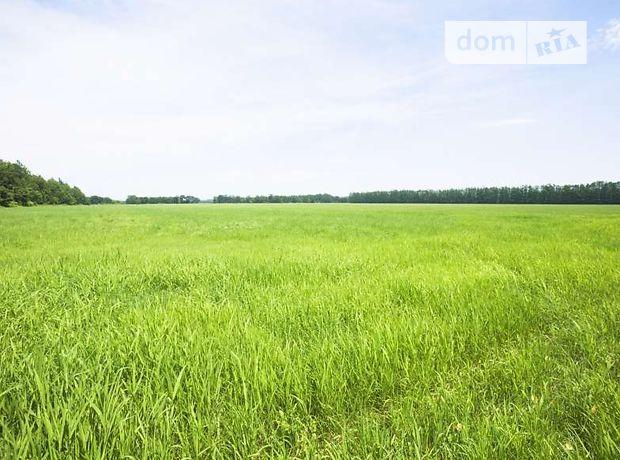 Долгосрочная аренда земли сельскохозяйственного назначения, Сумы