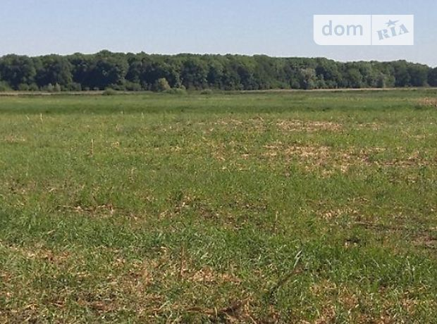 Аренда земли сельскохозяйственного назначения в селе Новотроицкое, цена: 15 000 грн за объект фото 1