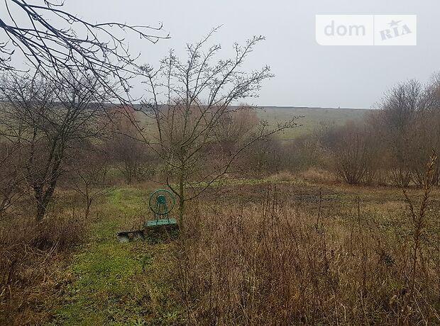 трехкомнатная дача, 65 кв. м, кирпич. Продажа в Карповцах (Хмельницкая обл.) фото 1
