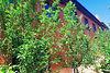 Продажа дома, 120м², Винница, р‑н.Старый город, Нагорная улица
